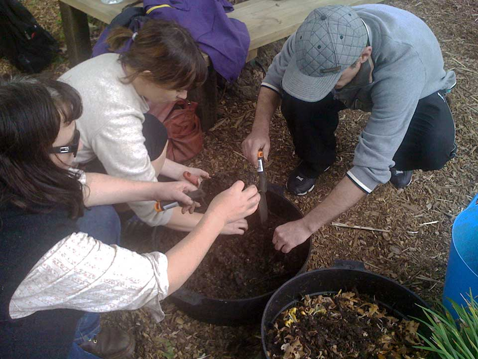 Horticultural Therapy at Pete's Patch